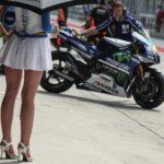 Paddock Girls MotoGP Malasia 2014