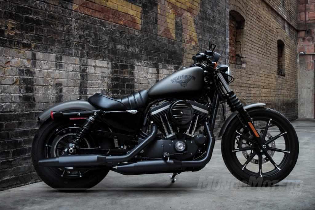 Harley-Davidson Iron 883 2019